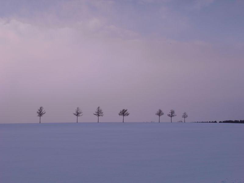 ヨーロッパを彷彿とさせる風景!北海道女満別を楽しむ