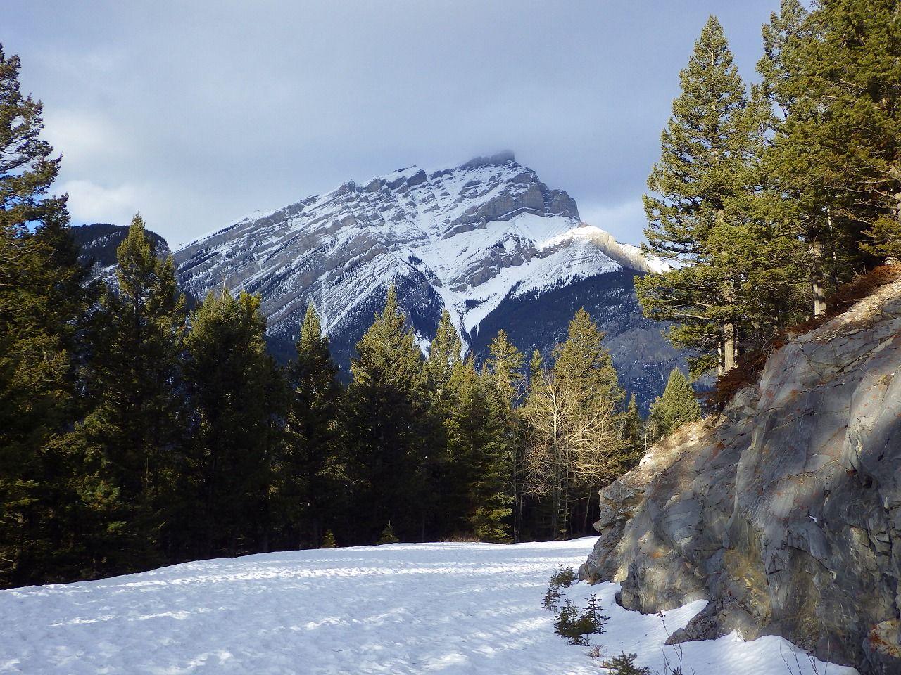 冬季通行止めになる道路は、深い雪を楽しめる魅力的なトレイル