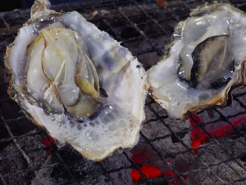 生産量日本一!広島県産カキが手軽に食べられる「かき小屋」の魅力