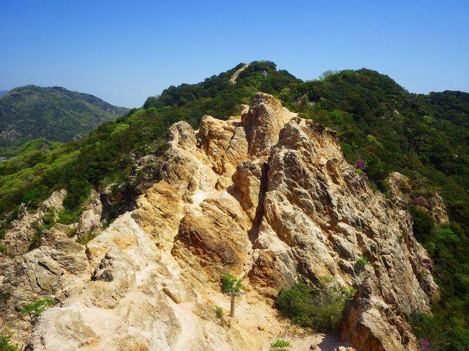 六甲山、摩耶山、須磨アルプス、縦走路には魅力的な山々がいっぱい!