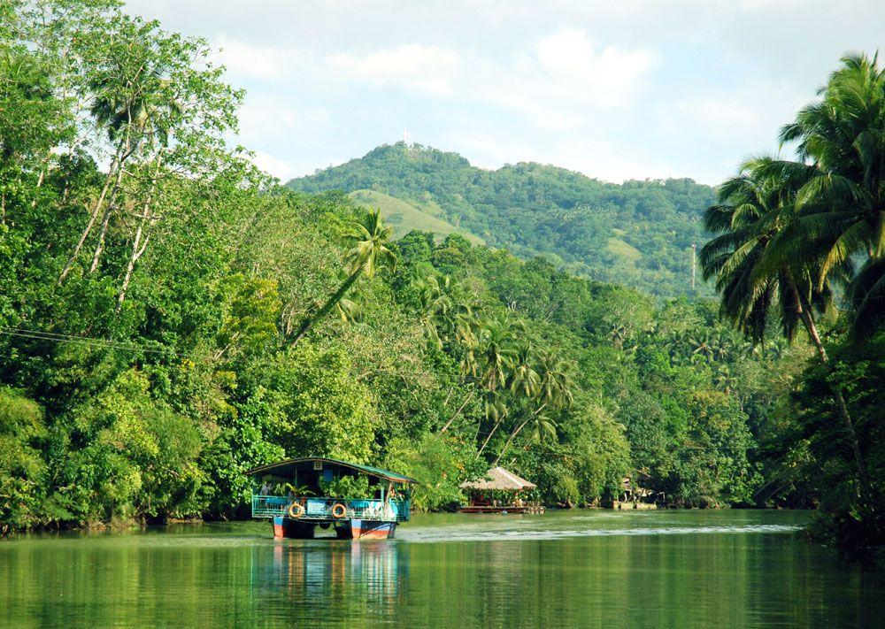 フィリピン・ボホール島へ ロボック川クルーズで大自然を満喫!