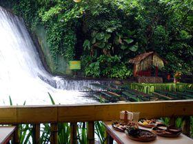 足元を水に浸し、滝壺でランチ!フィリピンのココナッツ農園で涼む休日