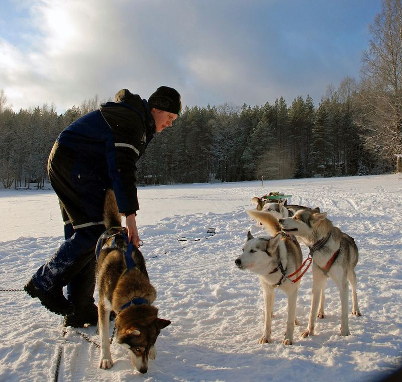 日帰り可!ヘルシンキ郊外で冬のアクティビティを遊び尽くそう