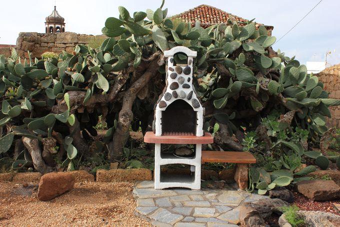 サボテン庭のBBQコーナー