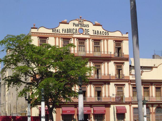 伝説的な葉巻工場パルテガス