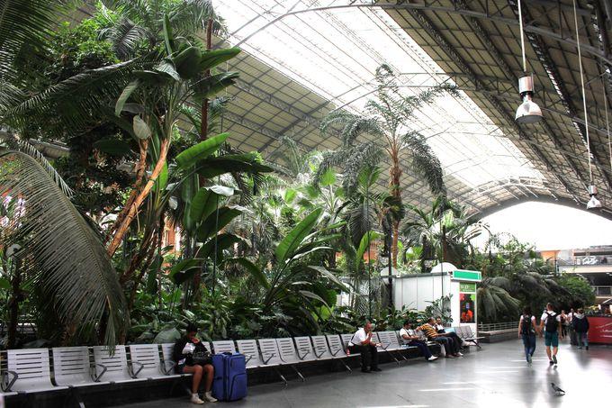 アトーチャ駅の発着電車