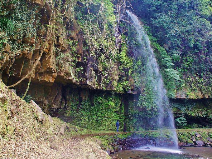 駐車場すぐ近くの小滝は裏側を歩くことも可能