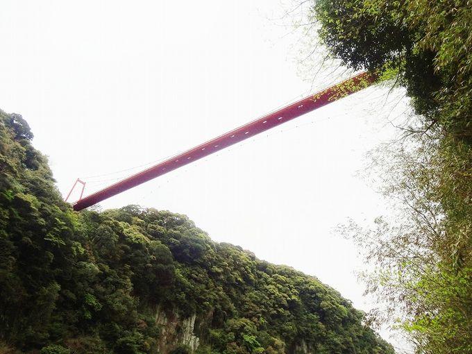 首が疲れるほど高く臨む神川大橋へ決心して登る