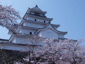 歴史的見所と戦闘的縄張を秘めた桜纏いし名城〜会津若松城〜