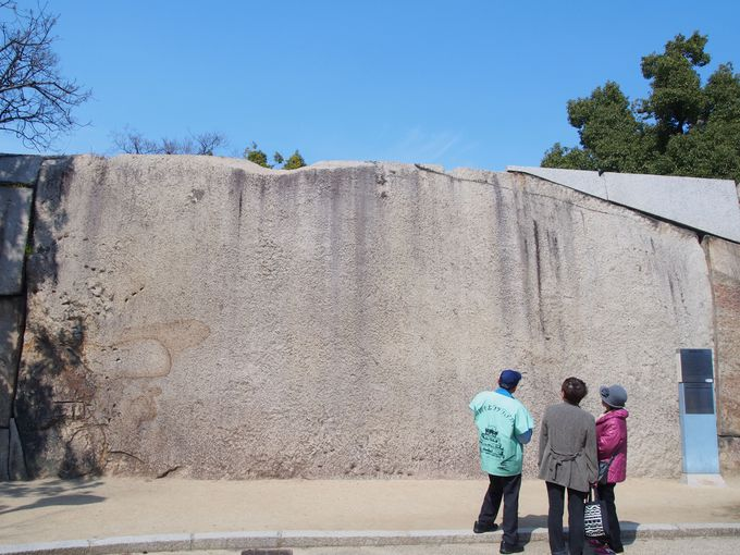 日本最大の城石「蛸石」