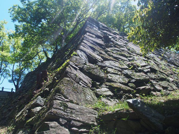 阿波青石が最も魅せる「弓櫓の石垣」が登城者へのご褒美