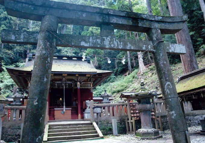 家康の願いが込められた愛知の霊峰「鳳来寺山」戦国がテーマのP.A.も!