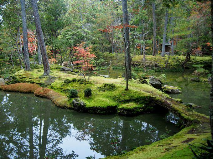 日本随一の苔の名庭「西芳寺」