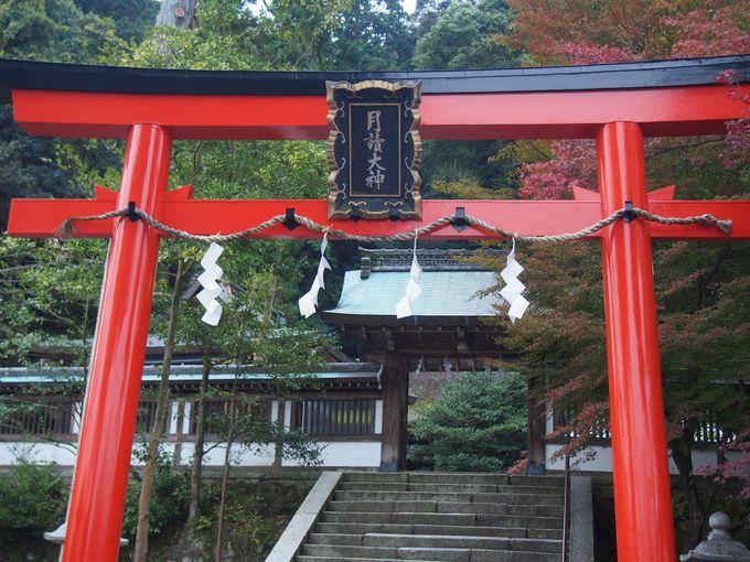 『日本書紀』にも現れる京都屈指の古社「月読神社」