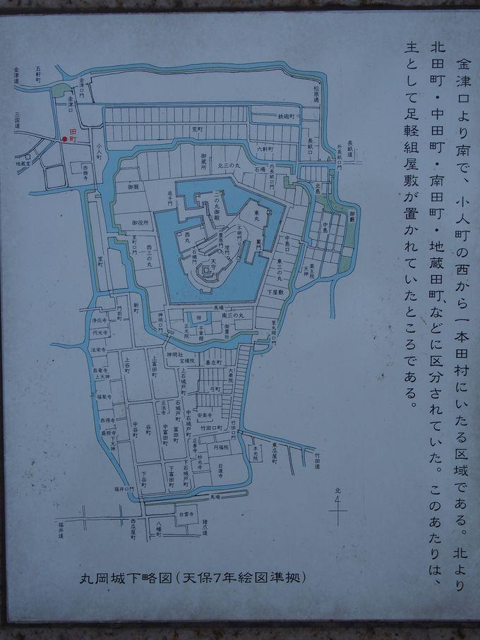こちらが丸岡城の縄張です
