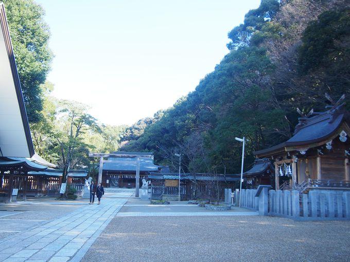 山城・飯盛城とは、どんな城?