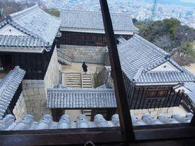山上に屹立する高石垣と武骨な櫓群の威容〜松山城〜