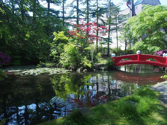 7.善知鳥神社