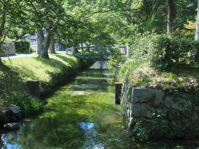 ささやかな水堀「足守陣屋跡」