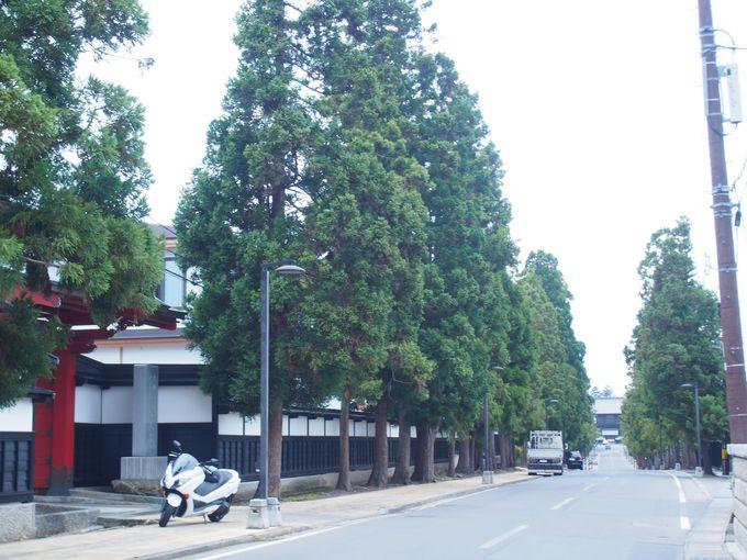 栄螺堂と禅林街の通り