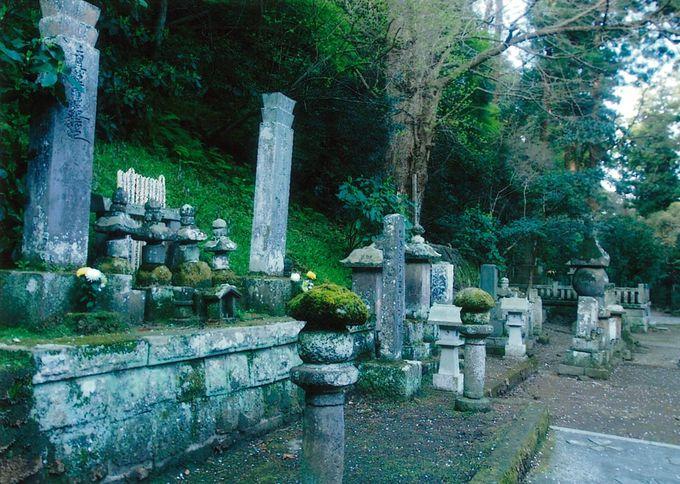 強い念が籠る2つの墓所