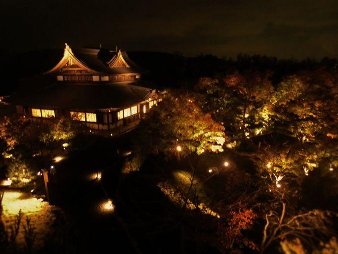青蓮院門跡と併せて訪れよう、将軍塚青龍殿のライトアップ