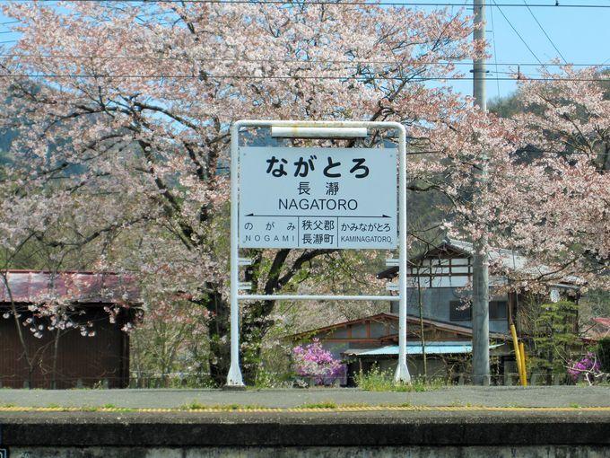 桜の名所長瀞
