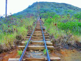 普通のハワイに飽きたらここ!線路の上を歩いて登るココヘッドクレータートレイル!