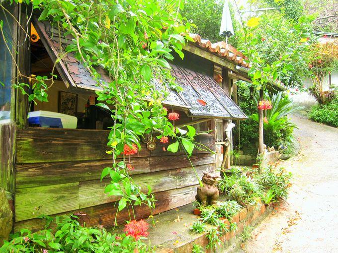 沖縄の自然を体感できる場所