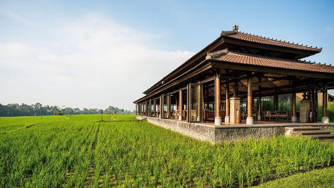 美しく広大な田園に囲まれたレストラン(The Restaurant)