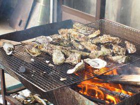 冬が旬!鳥羽市「中山牡蠣養殖所」で浦村牡蠣を食べまくろう
