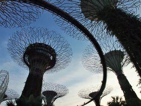 こんなの見たことない!未来都市シンガポールの観光名所5選