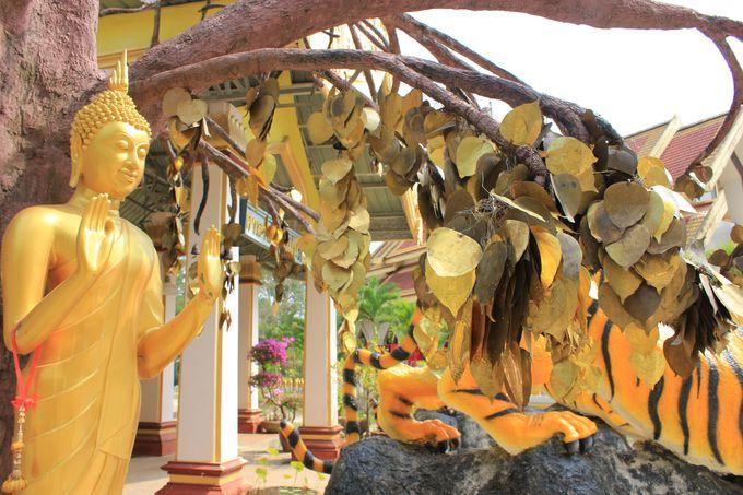 タイガーケイブテンプル(虎の洞窟寺院)