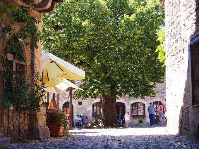 建物ほとんどが歴史的建造物という中世の村