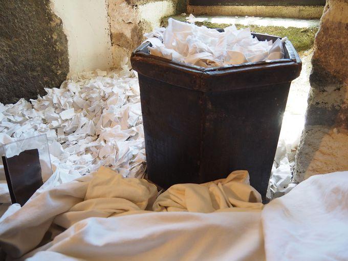 紙の材料はコウゾやミツマタだけではなかった!