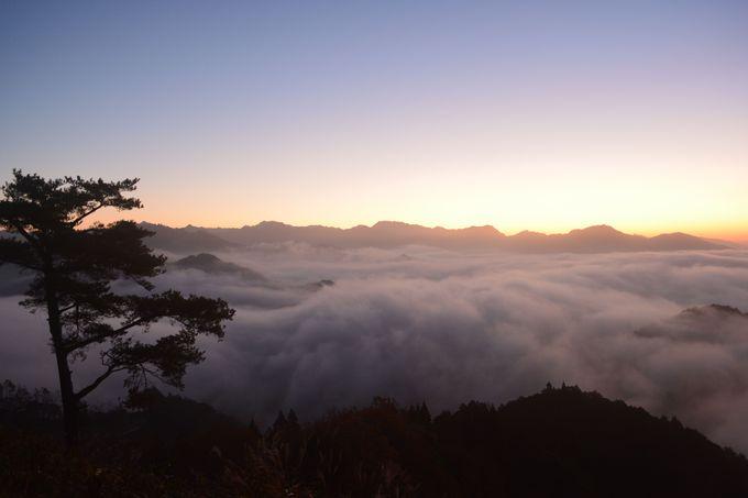 雲海を見るには