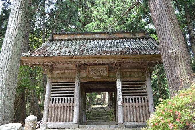 1200年の森の中へと続く、清水寺仁王門