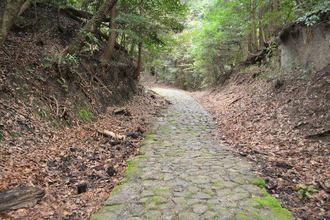 「滝坂の道」オススメの歩き方