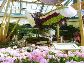 砂漠の花園が美しすぎる!ラスベガスのホテル「ベラージオ」は花&噴水の一大観光スポット