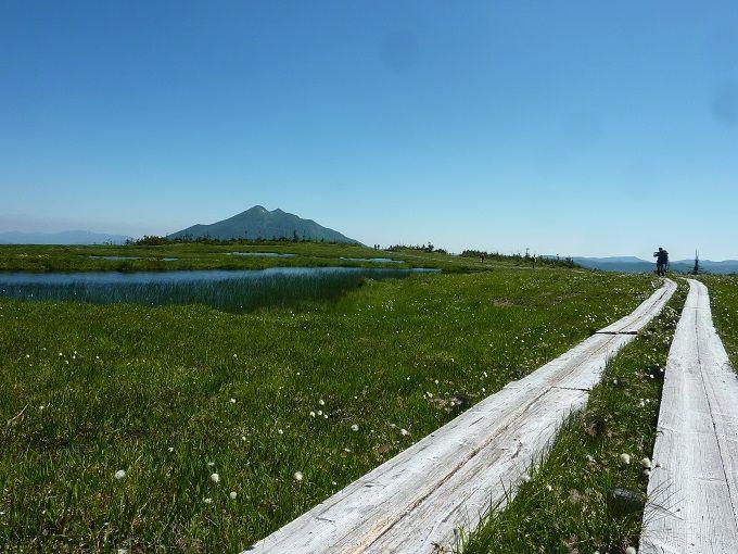 日本最大の山岳湿原・尾瀬国立公園をトレッキングしよう!