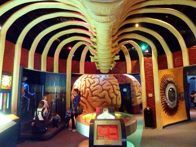 スモールライトで体内探検!?「ヘルス博物館」