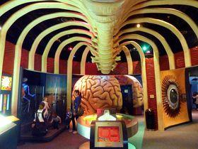 入館無料情報つき家族で楽しめる米国ヒューストン博物館4選