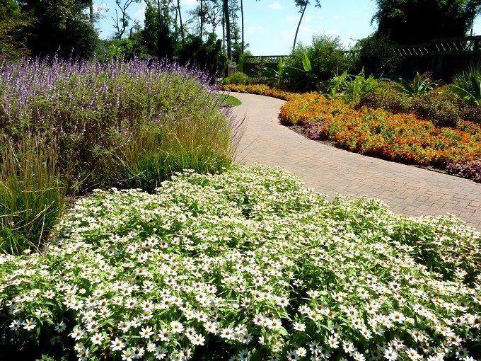 空港近くの花の楽園「マーサ—森林公園&植物園」