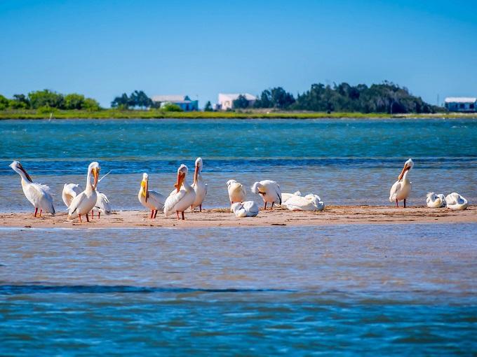 「パドレ島国立海岸」は白砂のロング・ロングビーチ