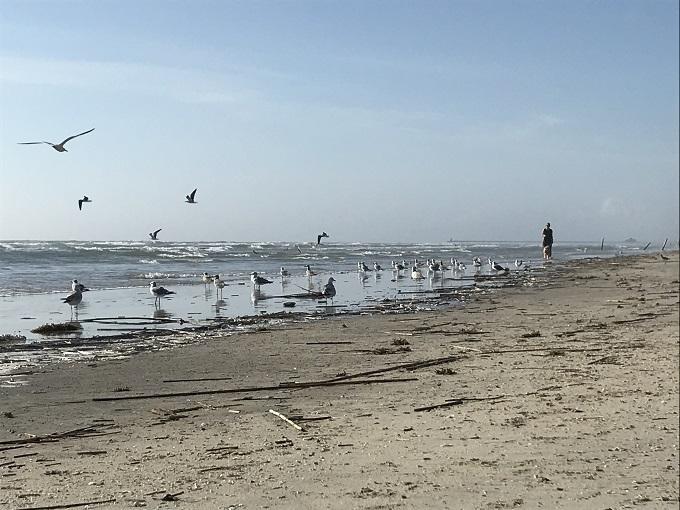 「ホーソーン・スイーツ」はビーチまで120秒!