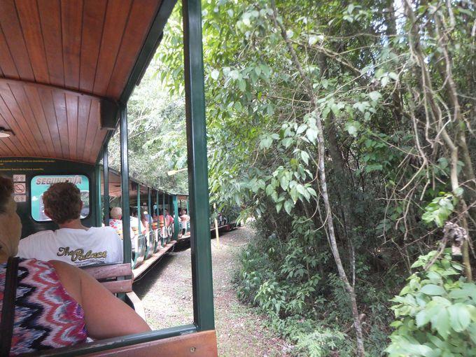 イグアス国立公園内は無料のトロッコ列車を利用しよう