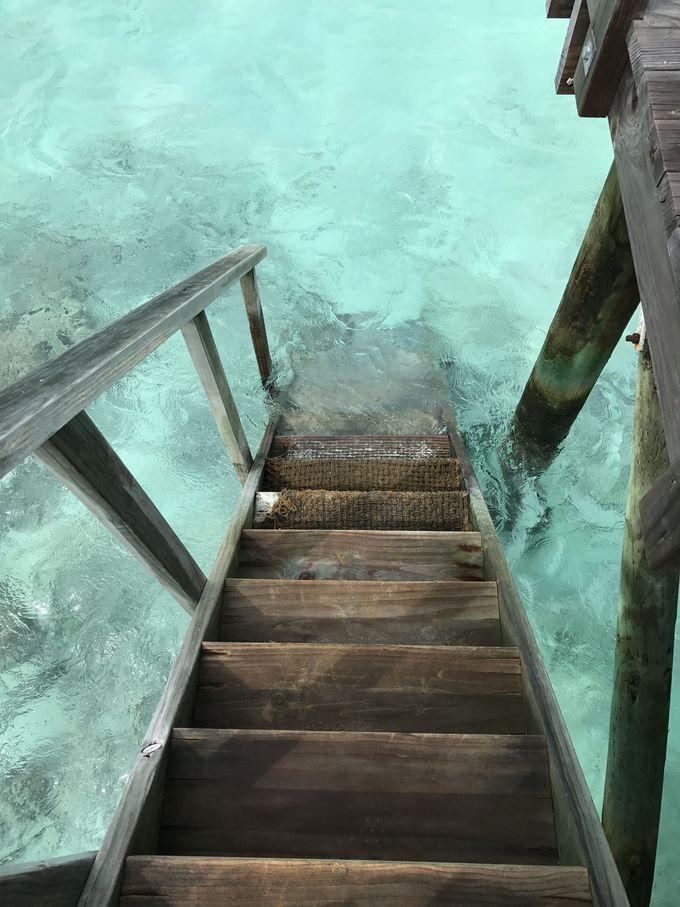 憧れの水上コテージで海の階段を降りたら・・