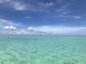 サメとシュノーケル!?タヒチ・ボラボラ島ぐるっと満喫「モツピクニック」