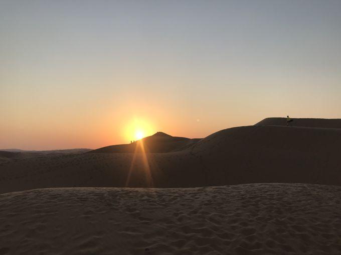 アラブ首長国連邦で最も美しい砂漠「リワ砂漠」