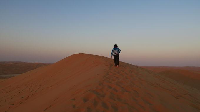 これは逃せない!砂漠のアクティビティ